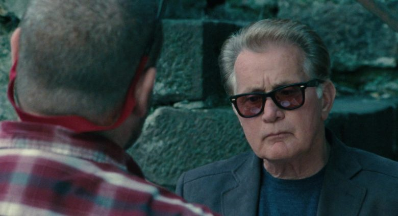 Ray-Ban Sunglasses Worn by Martin Sheen in The Way (2)