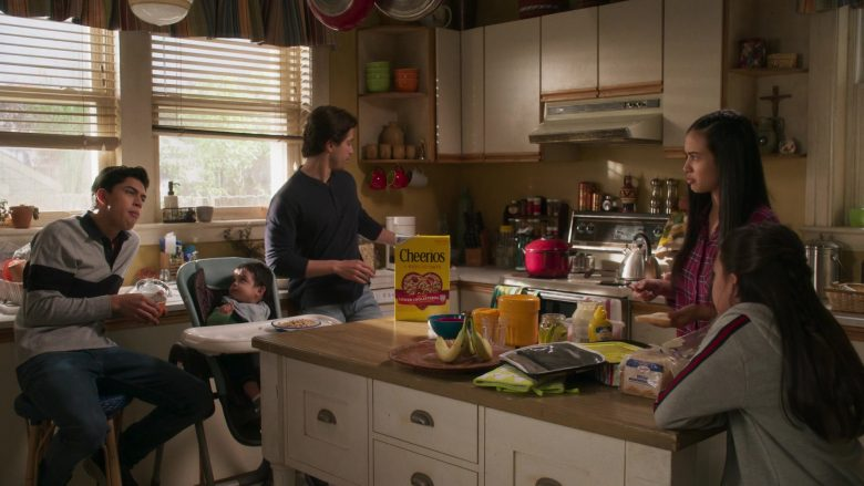 Cheerios Cereal in Party of Five Season 1 Episode 3 Long Distance (3)