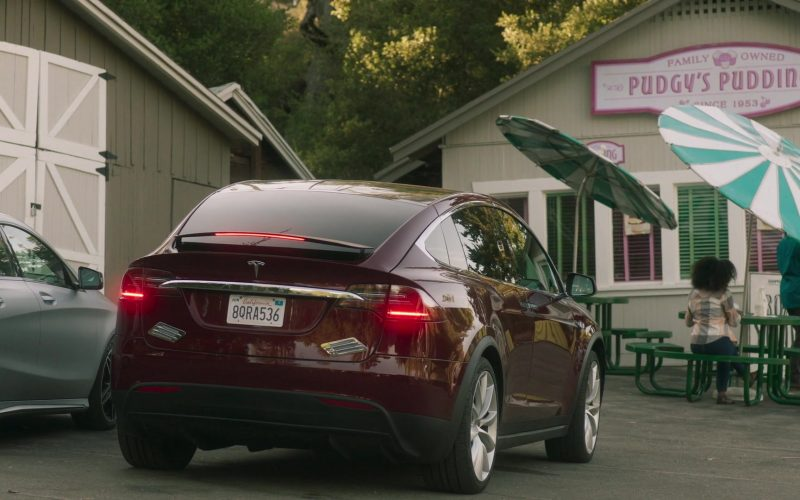 Tesla Model X SUV in Everything's Gonna Be Okay Season 1 Episode 1 Seven-Spotted Ladybug (2020)