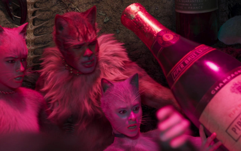 Piper-Heidsieck Champagne in Cats (1)