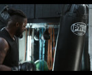 Pro Boxing Punching Bags in Spenser Confidential (1)
