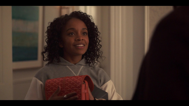 Goyard Handbag of Rachel Naomi Hilson as Mia Brooks in Love, Victor S01E04 (2)