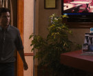 Samsung TV in Identity Thief (2013)