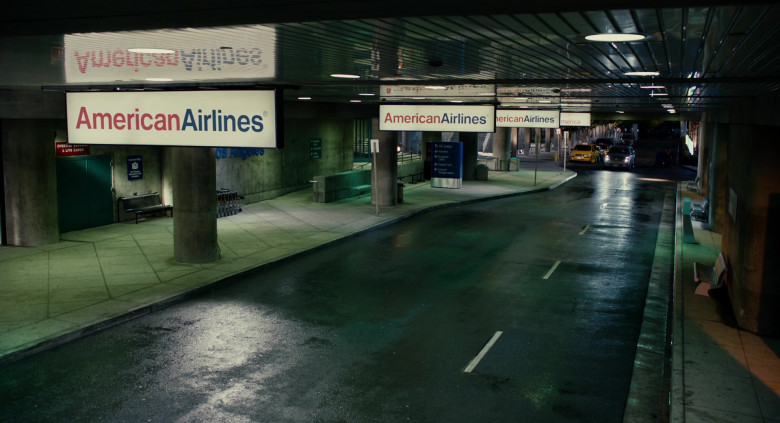 American Airlines in Jack and Jill (2011)
