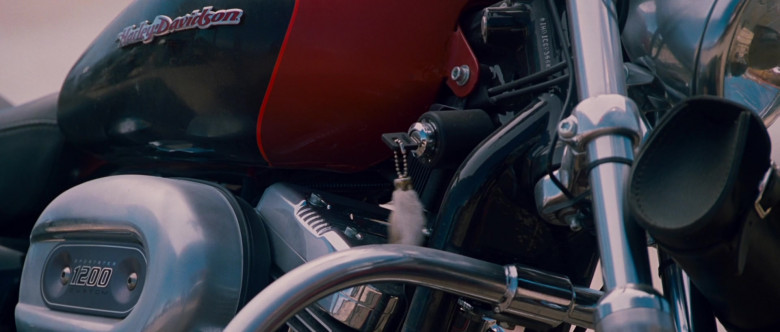 Harley-Davidson Sportster 1200 Motorcycle of William H. Macy as Dudley Frank in Wild Hogs (4)