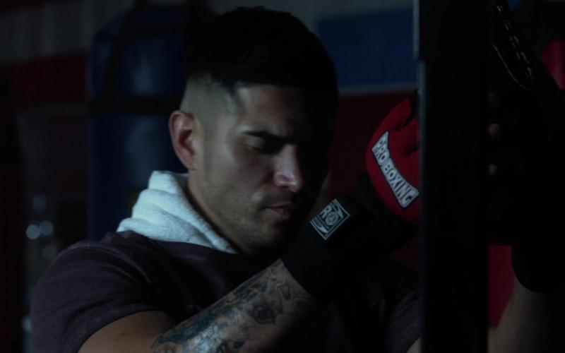 Pro Boxing in L.A.'s Finest S02E09