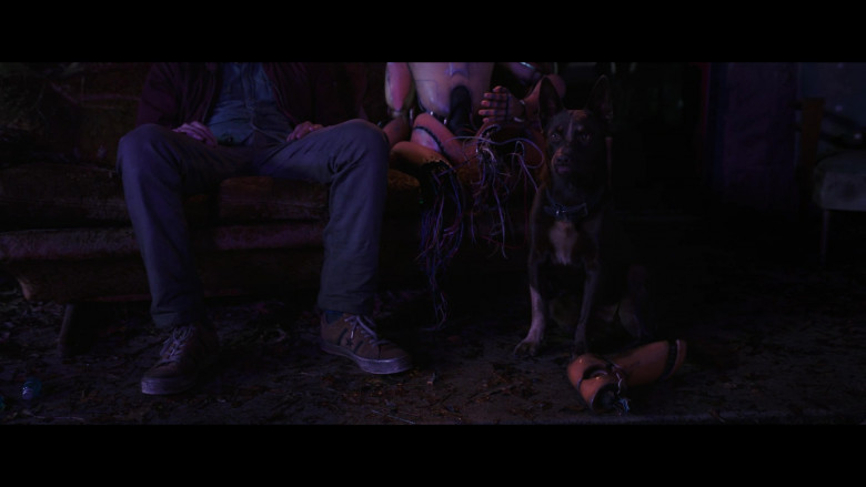 Converse Shoes of Dylan O'Brien as Joel Dawson in Love and Monsters (4)