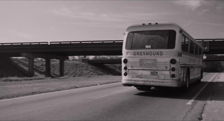 Greyhound Express Bus in The Glorias Movie (3)