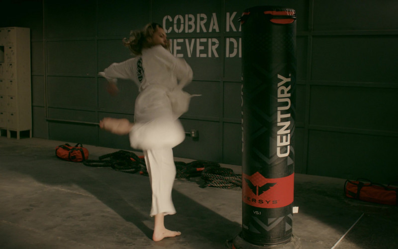 Century Punching Bag in Cobra Kai S02E09 (1)