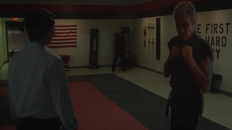 Century Punching Bag in Cobra Kai S03E01 (2)