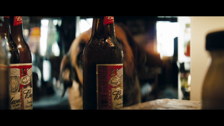 Budweiser Beer Bottles in Shooter (2007)