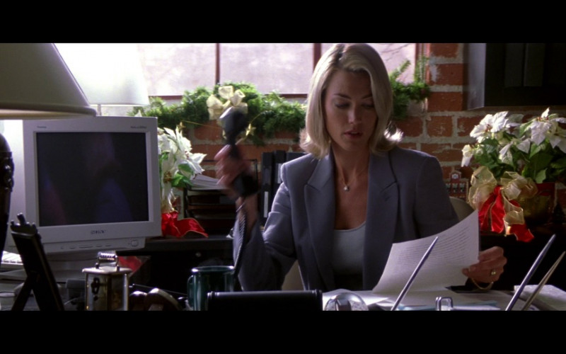 Sony Computer Monitor in Enemy of the State (1998)