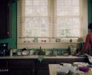 Joy Ultra Dishwashing Liquid in Queen Sugar S05E05 May 19, ...