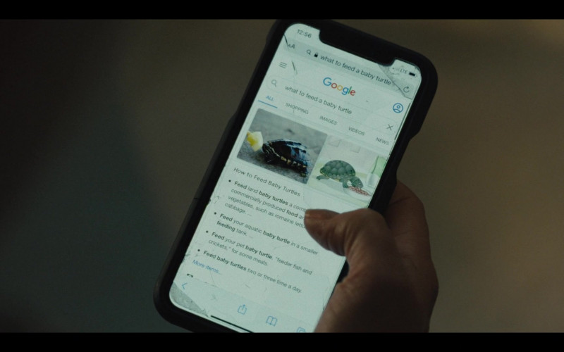 Google WEB Search in Mare of Easttown Episode 1 Miss Lady Hawk Herself (2021)